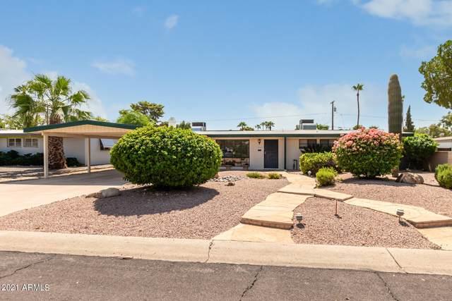 1037 E Northview Avenue, Phoenix, AZ 85020 (MLS #6279470) :: Elite Home Advisors