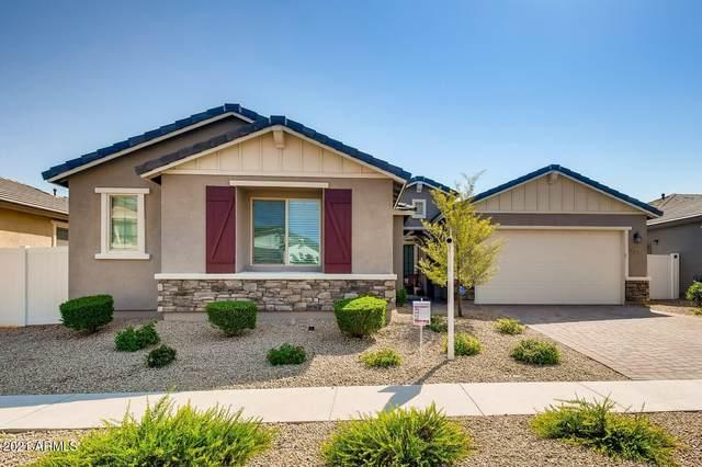 6321 S 24TH Place, Phoenix, AZ 85042 (MLS #6288306) :: Elite Home Advisors