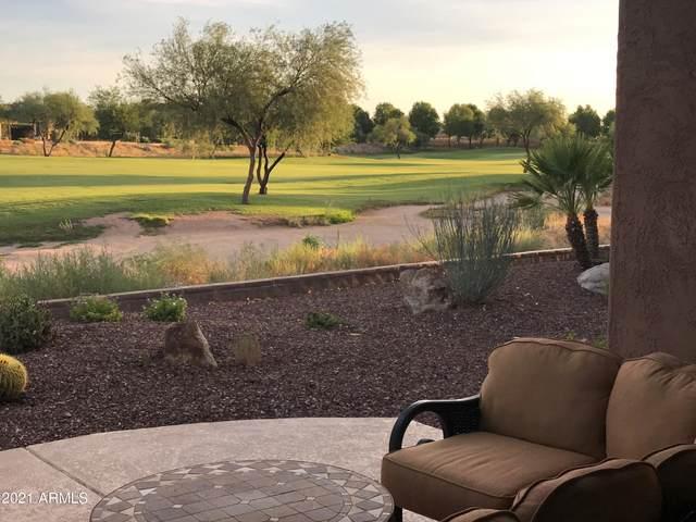 27484 N Cardinal Lane, Peoria, AZ 85383 (MLS #6299581) :: Long Realty West Valley