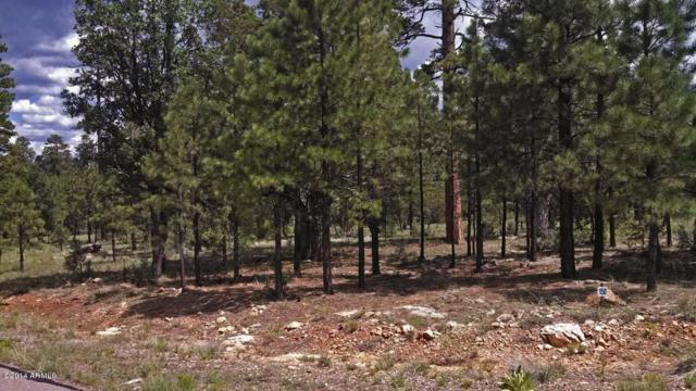 5176 Taos Circle, Happy Jack, AZ 86024 (MLS #4970884) :: The Results Group