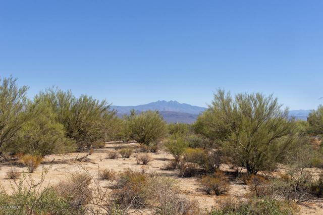 28912 N 151ST Street, Scottsdale, AZ 85262 (MLS #5674141) :: Brett Tanner Home Selling Team