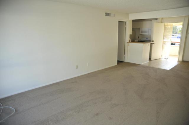3828 N 32ND Street #215, Phoenix, AZ 85018 (MLS #5703293) :: The Wehner Group