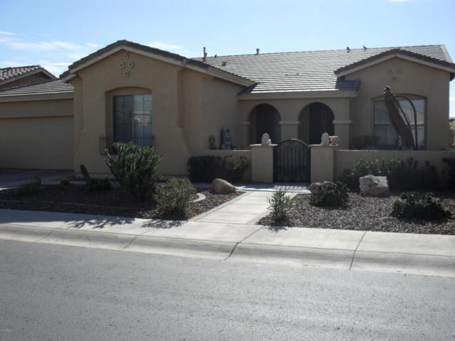 42217 W Baccarat Drive, Maricopa, AZ 85138 (MLS #5706428) :: Santizo Realty Group