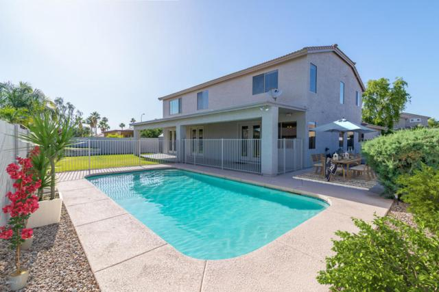 241 W Wood Drive, Chandler, AZ 85248 (MLS #5733520) :: My Home Group