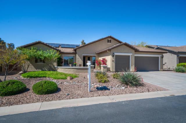 7388 W Trenton Way, Florence, AZ 85132 (MLS #5739750) :: Yost Realty Group at RE/MAX Casa Grande