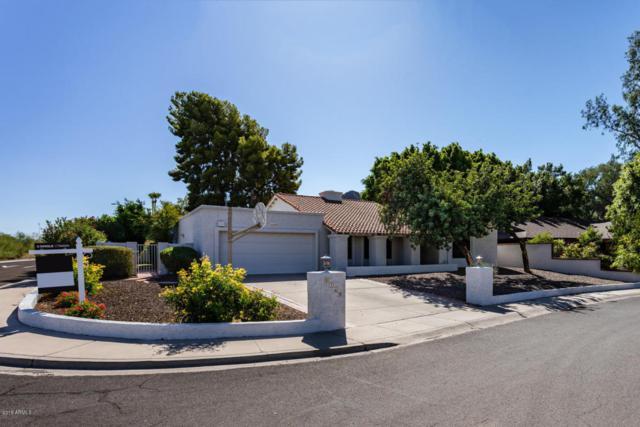 8149 N 18TH Place, Phoenix, AZ 85020 (MLS #5750169) :: My Home Group