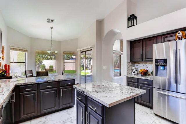 17820 N 56TH Street, Scottsdale, AZ 85254 (MLS #5767193) :: The Everest Team at My Home Group