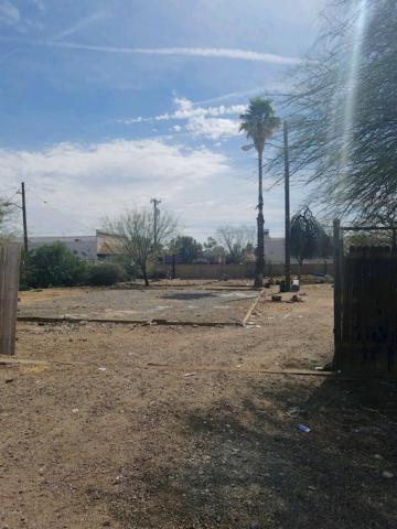 2907 E Danbury Road, Phoenix, AZ 85032 (MLS #5787619) :: Brett Tanner Home Selling Team