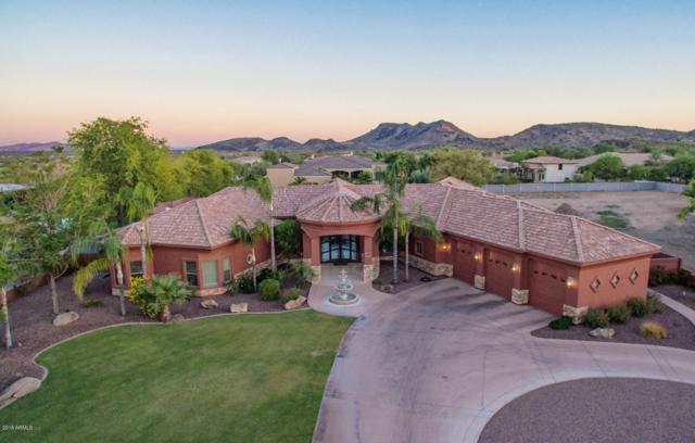 4721 W Creedance Boulevard, Glendale, AZ 85310 (MLS #5821102) :: Occasio Realty