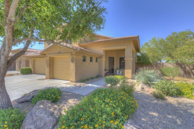 7018 W Miner Trail, Peoria, AZ 85383 (MLS #5822936) :: The Wehner Group