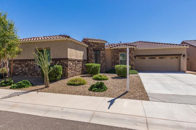 17871 W Nighthawk Way, Goodyear, AZ 85338 (MLS #5826299) :: Yost Realty Group at RE/MAX Casa Grande