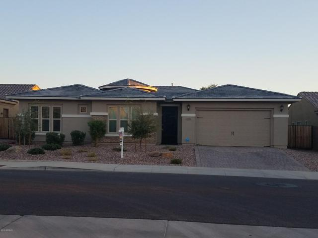 2195 E Tomahawk Drive, Gilbert, AZ 85298 (MLS #5828679) :: The Jesse Herfel Real Estate Group