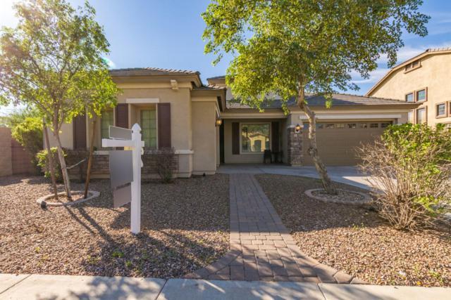13603 W Catalina Drive, Avondale, AZ 85392 (MLS #5831375) :: The Garcia Group