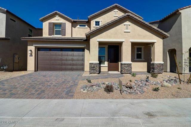 6638 E Rose Marie Lane, Phoenix, AZ 85054 (MLS #5833667) :: CC & Co. Real Estate Team