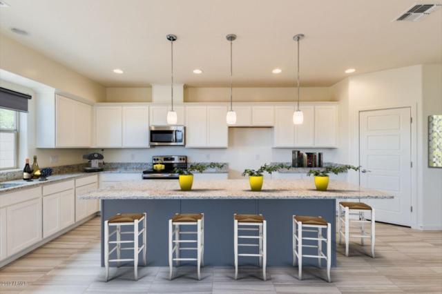 16930 S 16TH Lane, Phoenix, AZ 85045 (MLS #5852694) :: Revelation Real Estate