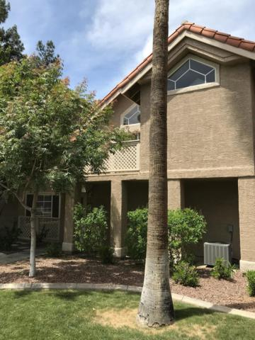 1633 E Lakeside Drive #5, Gilbert, AZ 85234 (MLS #5872126) :: The Everest Team at My Home Group