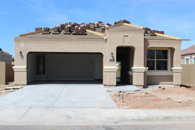 1751 N Mandeville Lane, Casa Grande, AZ 85122 (MLS #5877243) :: Lux Home Group at  Keller Williams Realty Phoenix