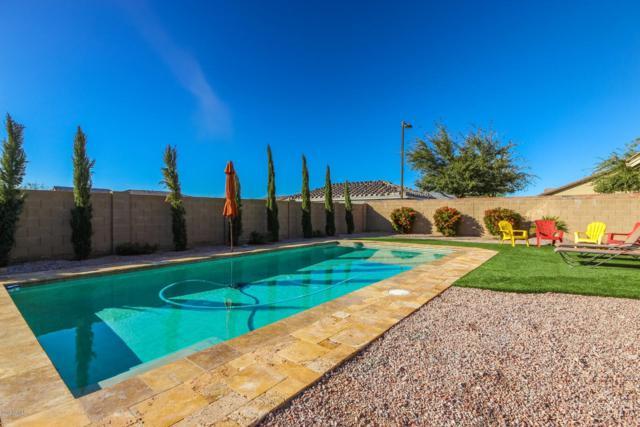 12744 N 142ND Lane, Surprise, AZ 85379 (MLS #5880651) :: Yost Realty Group at RE/MAX Casa Grande
