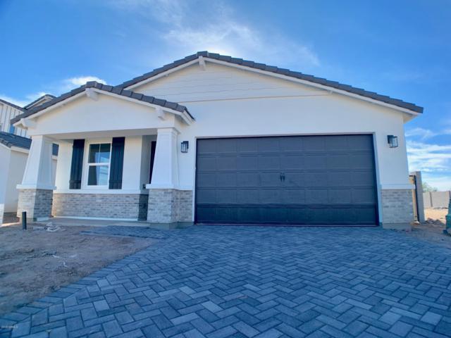 600 E Bamboo Lane, San Tan Valley, AZ 85140 (MLS #5883106) :: Yost Realty Group at RE/MAX Casa Grande