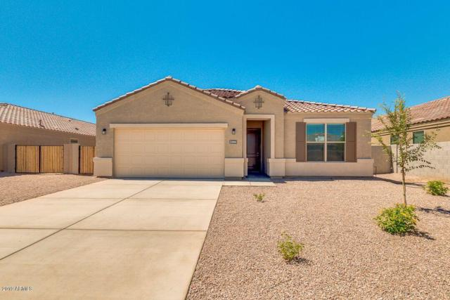 19207 N Piccolo Drive, Maricopa, AZ 85138 (MLS #5884554) :: Openshaw Real Estate Group in partnership with The Jesse Herfel Real Estate Group