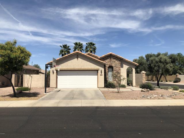3670 E Flower Street, Gilbert, AZ 85298 (MLS #5885611) :: Revelation Real Estate