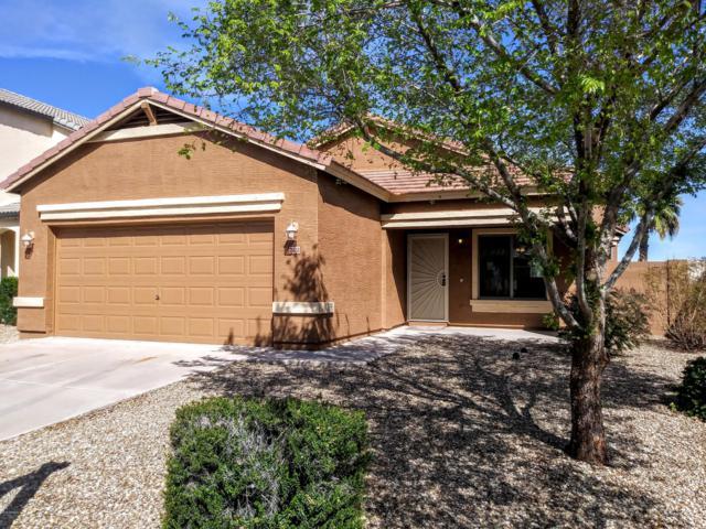 15033 N 172ND Drive, Surprise, AZ 85388 (MLS #5891264) :: Yost Realty Group at RE/MAX Casa Grande