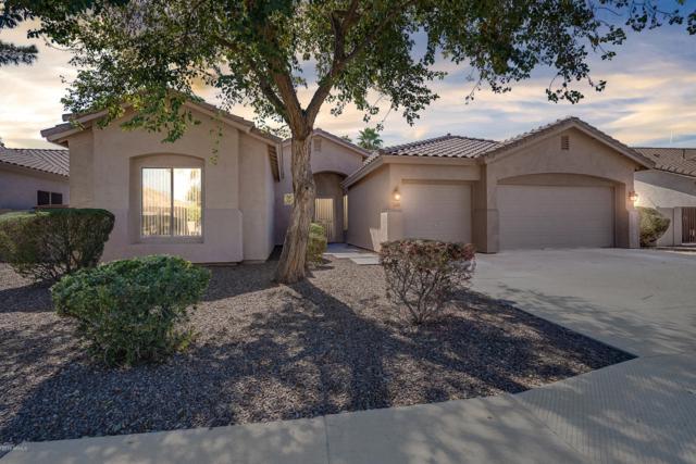 2295 E La Costa Place, Chandler, AZ 85249 (MLS #5891610) :: Devor Real Estate Associates