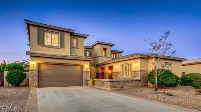 1308 E Kingbird Drive, Gilbert, AZ 85297 (MLS #5900600) :: Yost Realty Group at RE/MAX Casa Grande