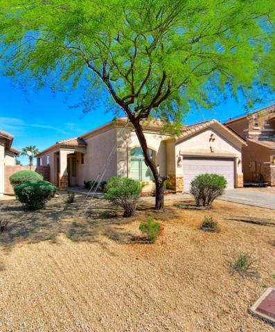 17621 N 41ST Street, Phoenix, AZ 85032 (MLS #5904693) :: Yost Realty Group at RE/MAX Casa Grande
