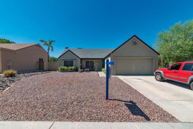 1361 E Piute Avenue, Phoenix, AZ 85024 (MLS #5946756) :: CC & Co. Real Estate Team