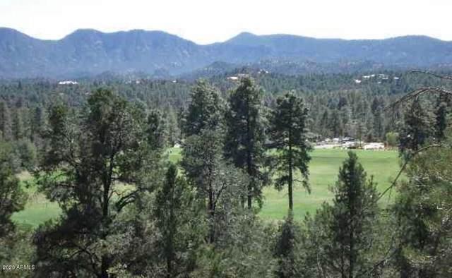 2603 E Morning Glory Circle, Payson, AZ 85541 (MLS #6038843) :: Brett Tanner Home Selling Team