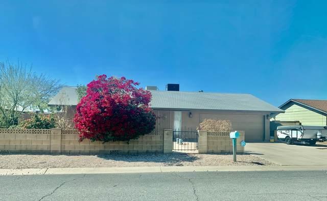 1398 S Buena Vista Drive, Apache Junction, AZ 85120 (MLS #6047865) :: Lux Home Group at  Keller Williams Realty Phoenix