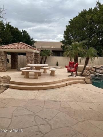8124 W Planada Lane, Peoria, AZ 85383 (MLS #6194886) :: Yost Realty Group at RE/MAX Casa Grande