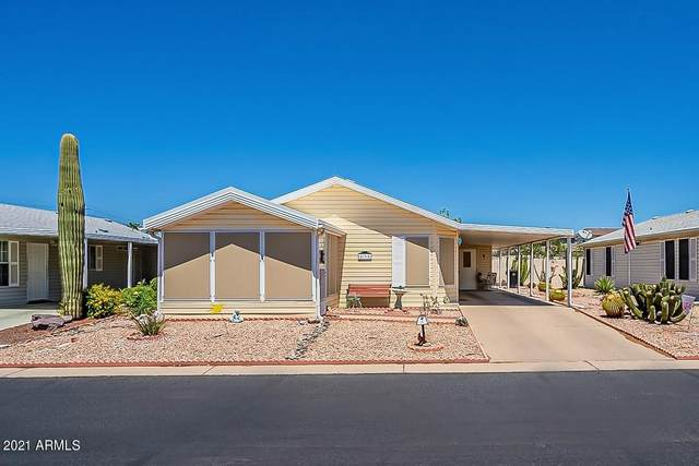 215 N Power Road #135, Mesa, AZ 85205 (MLS #6231386) :: Midland Real Estate Alliance