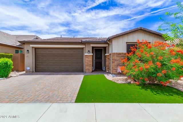 10917 W Edgewood Drive, Sun City, AZ 85351 (MLS #6244534) :: Yost Realty Group at RE/MAX Casa Grande