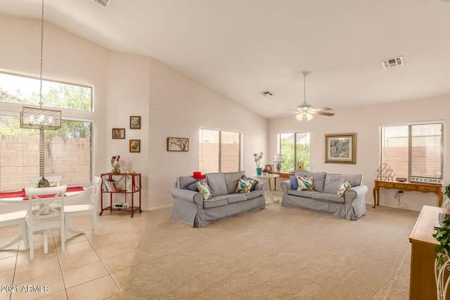 17325 N 22ND Way, Phoenix, AZ 85022 (MLS #6259778) :: Yost Realty Group at RE/MAX Casa Grande