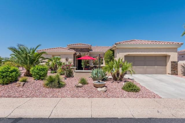 13724 W Junipero Drive, Sun City West, AZ 85375 (MLS #5654976) :: Desert Home Premier