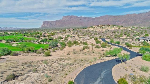 3506 S Goldmine Trail, Gold Canyon, AZ 85118 (MLS #5669010) :: CC & Co. Real Estate Team