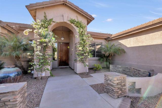 39677 N Foxtail Lane, San Tan Valley, AZ 85140 (MLS #5751617) :: Kepple Real Estate Group