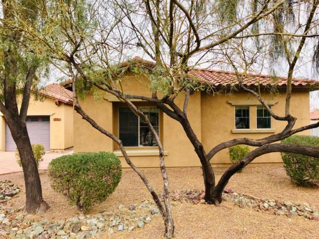2138 E Desert Drive, Phoenix, AZ 85042 (MLS #5778856) :: Devor Real Estate Associates