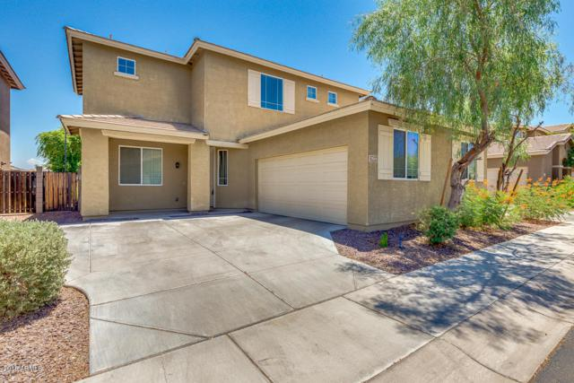 7511 S 27TH Terrace, Phoenix, AZ 85042 (MLS #5789026) :: Occasio Realty