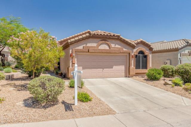 4249 E Desert Sky Court, Cave Creek, AZ 85331 (MLS #5789124) :: The Laughton Team
