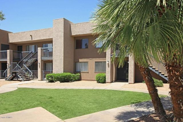 3810 N Maryvale Parkway #1059, Phoenix, AZ 85031 (MLS #5798194) :: Team Wilson Real Estate