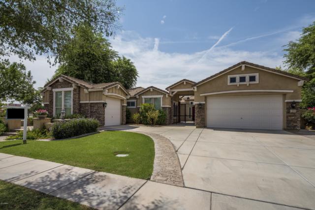 3177 E Vaughn Avenue, Gilbert, AZ 85234 (MLS #5802628) :: CC & Co. Real Estate Team