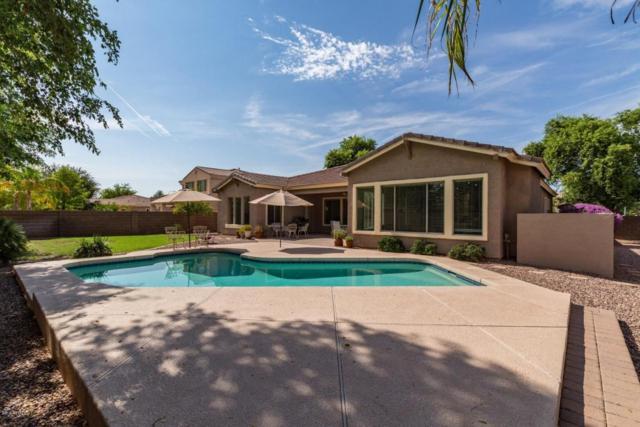 525 E Coconino Drive, Chandler, AZ 85249 (MLS #5808014) :: The Garcia Group