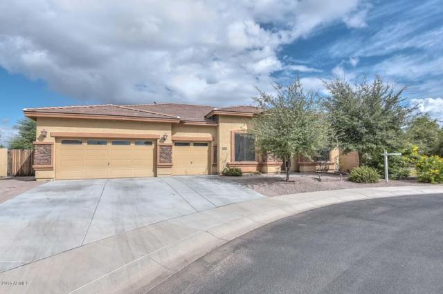 7826 W Cavalier Drive, Glendale, AZ 85303 (MLS #5832532) :: The Property Partners at eXp Realty