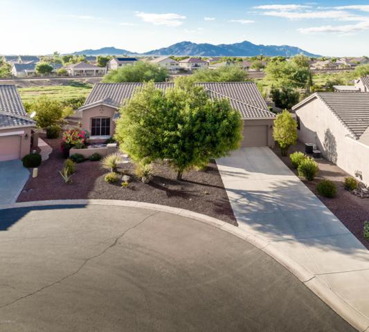 42922 W Castle Cove Circle, Maricopa, AZ 85138 (MLS #5837299) :: Revelation Real Estate