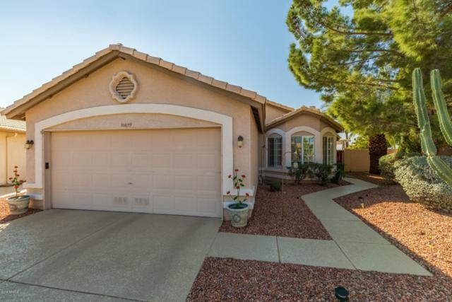 10659 W Yukon Drive, Peoria, AZ 85382 (MLS #5845734) :: The W Group