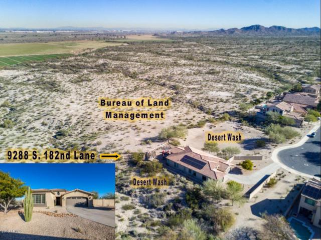 9288 S 182ND Lane, Goodyear, AZ 85338 (MLS #5880743) :: Yost Realty Group at RE/MAX Casa Grande