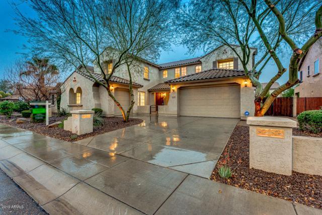 5545 W Molly Lane, Phoenix, AZ 85083 (MLS #5887566) :: Occasio Realty